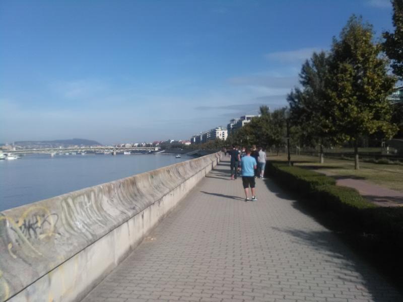 wegry_cz1_306